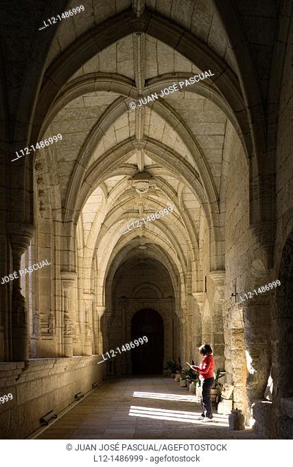 Cloister, Cathedral, Ciudad Rodrigo, Salamanca province, Castilla y León, Spain