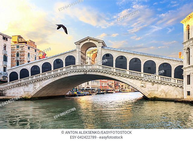 The Rialto Bridge in the quiet morning, no people, Venice, Italy