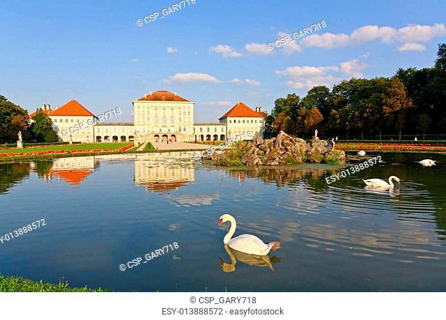 Swan at the Nymphenburg palace
