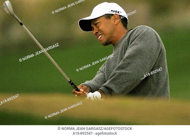 Tiger Woods, golf champion