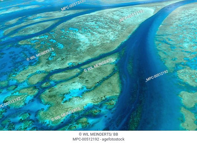 Aerial view of tidal channels in coral which feed central lagoon, Aldabra, Seychelles
