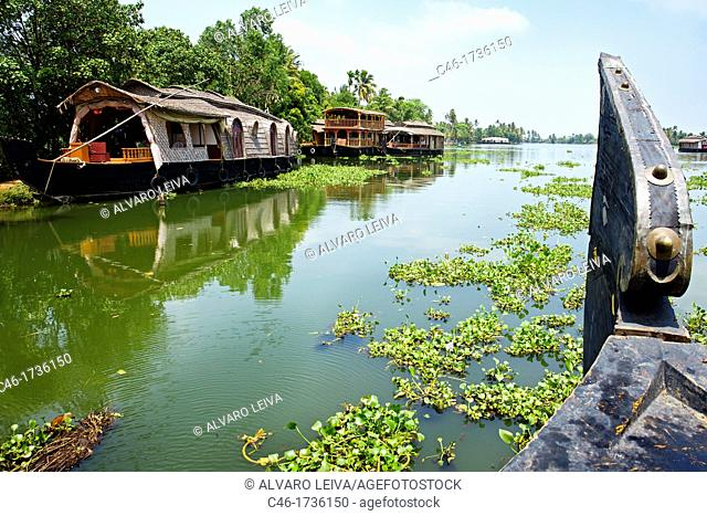 House boat, Backwaters, Alleppey, Kerala, India