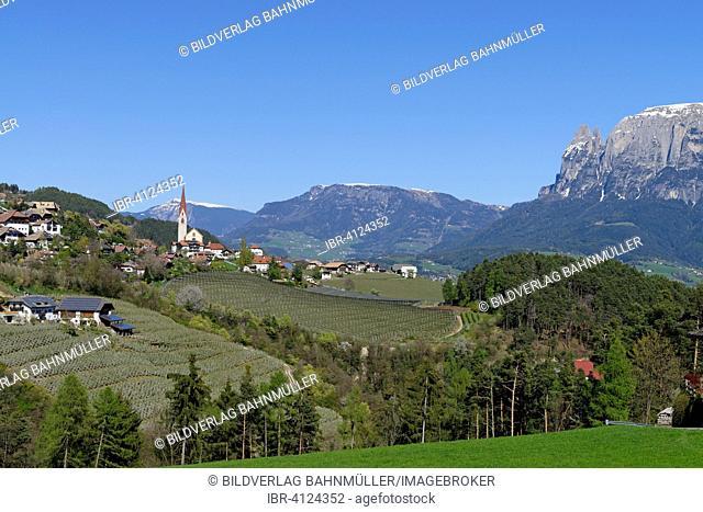 Landscape near Unterinn on the Ritten Renon with Schlern massif, near Bolzano, South Tyrol, Italy
