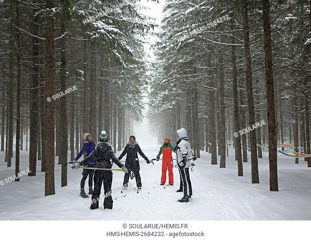 Canada, Quebec province, Laurentians region, Mont Tremblant, Quebec women making cross country ski-yoga in the undergrowth of the Domaine Saint-Bernard