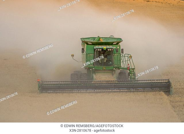 A combine harvester moves through the dust of collected grains during a barley harvest in Reardan, Washington