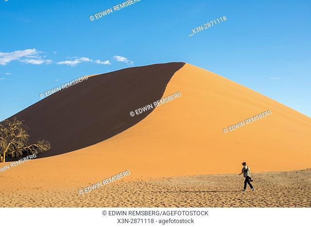 Tourist walking next to Dune 45, an ancient dune in the Soussuvlei salt pan in Namib-Naukluft National Park, located in Namibia, Africa