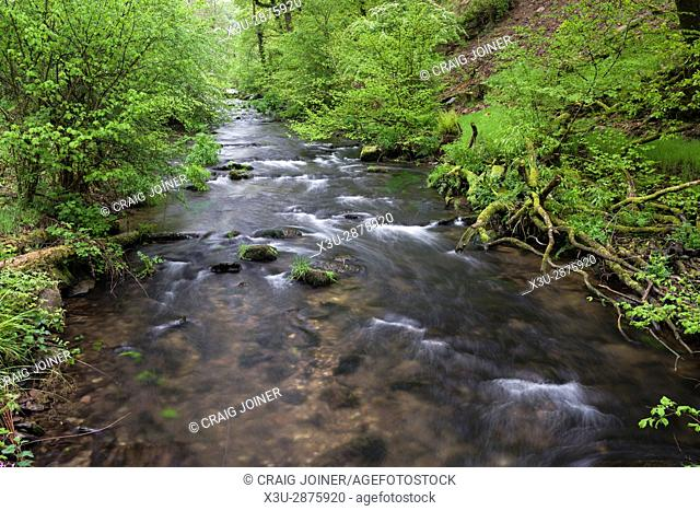 The River Haddeo in spring at Hartford Bottom, Exmoor National Park near Hartford, Somerset, England