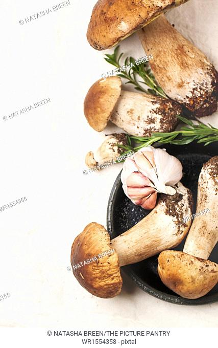 Top view on heap of cep mushrooms with thyme and garlic over white tablecloth