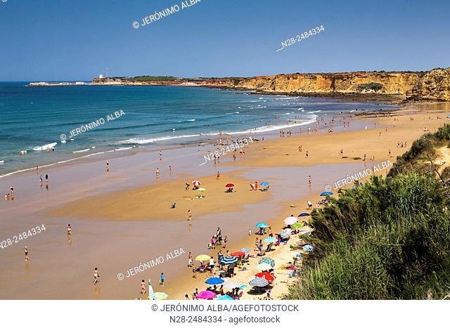 Fuente del Gallo beach, Conil de la Frontera, Cadiz province, Andalusia, Spain