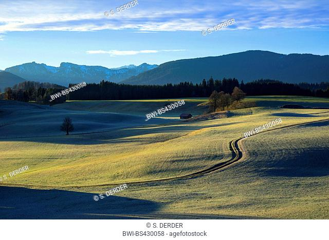 view to Ammergau Alps in autumn, Germany, Bavaria, Wildsteig