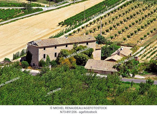 Plain of the village of Gordes, Luberon, Vaucluse, Provence-Alpes-Côte d'Azur, France