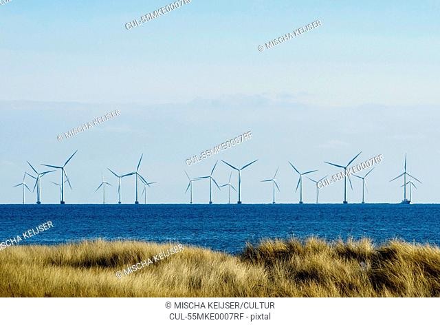 Windfarm at sea, Denmark
