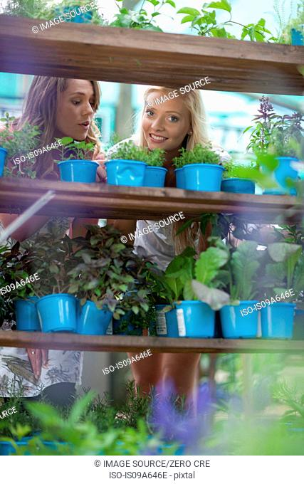 Woman shopping for plants in nursery