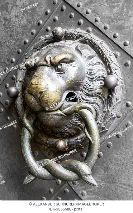 Historical door knocker, lion's head with two snakes in its mouth, historic centre, Dresden, Saxony, Germany