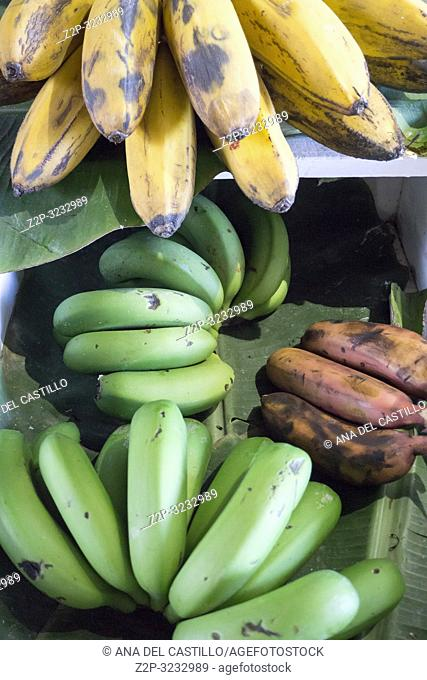Bananas from Canary islands