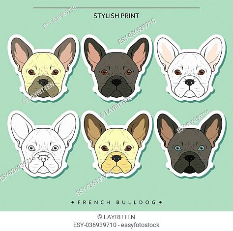 Set goals sketch french bulldog different color . Cute dog for realistic design. Dog Doodle prints for printer on clothes, T-shirts , textiles