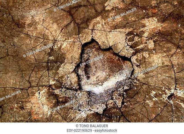 aged wall texture grunge broken weathered cement