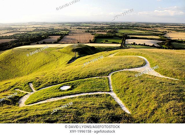 Uffington White Horse. Prehistoric Bronze Age chalk hill figure Oxfordshire, England. Close up over head, eye, ears and neck