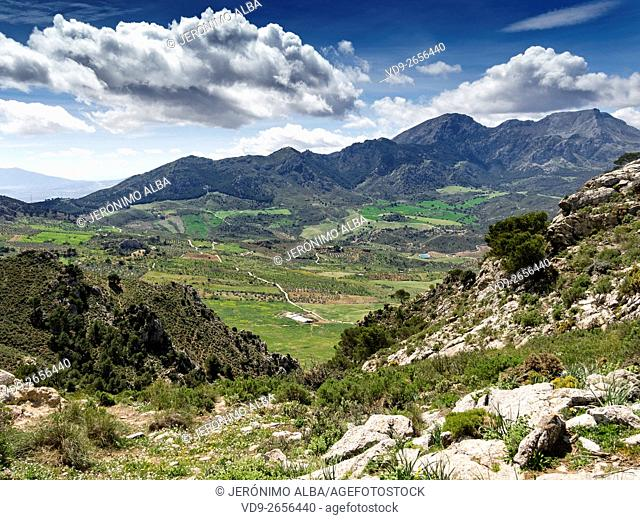 Natural landscape. Sierra de las Nieves Natural Park. Málaga Andalusia, Spain Europe
