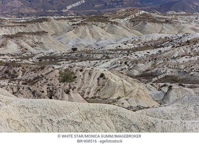 Desert landscape near Abanilla, Murcia Region, Spain, Europe