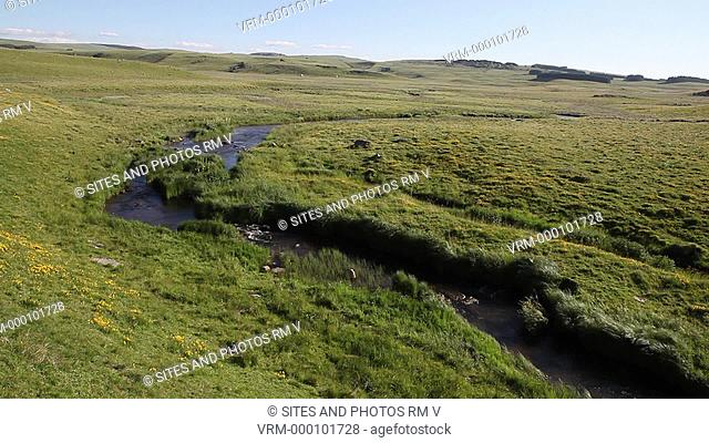 Locked Down Shot, WA, daylight. View of a flowing stream surrounded by grassy meadow in a windy weather