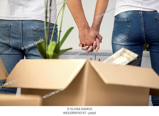 Close-up of couple with cardboard boxes standing hand in hand in new home