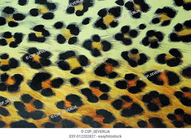 leopard pettern background