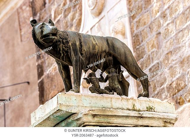 Capitoline Wolf Lupa Capitolina is a wolf character. The wolf is suckle Romulus and Remus, the mythical founders of Rome