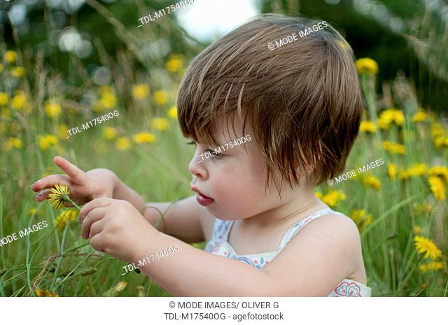 A little girl sitting in a meadow, looking at a wild flower