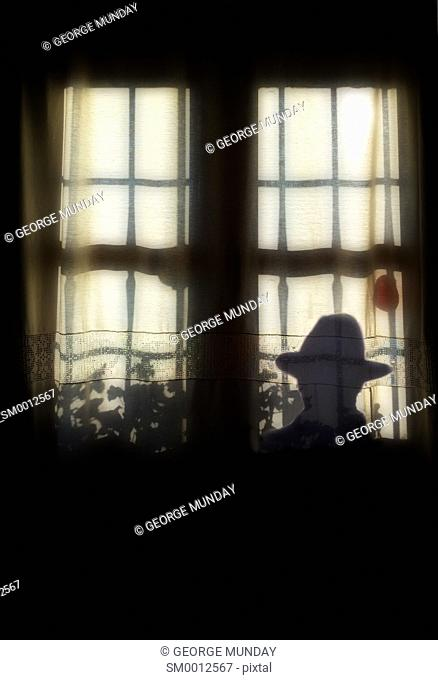 Silhouette of Man outside barred window