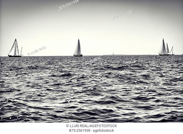 Several vintage sailing boats in a Panerai race, at the Mediterranean Sea. Menorca, Biosphere Reserve, Baleares, Spain, Europe