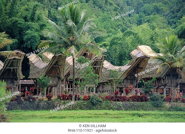Traditional village, Kete Kesu, Torajaland, Sulawesi, Indonesia