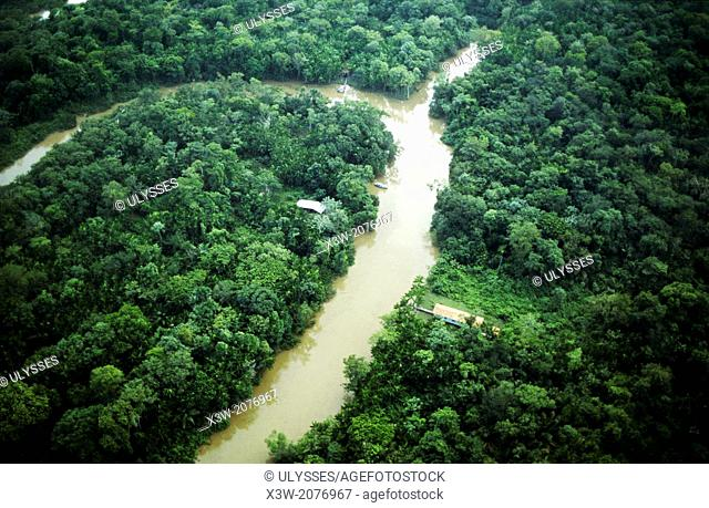 delta of amazonas river and rainforest, belem, state of para, amazon region, brazil, south america