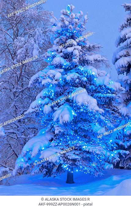 View of a tree decorated with blue lights in Anchorage Town Square, Downtown Anchorage,Southcentral Alaska, Winter