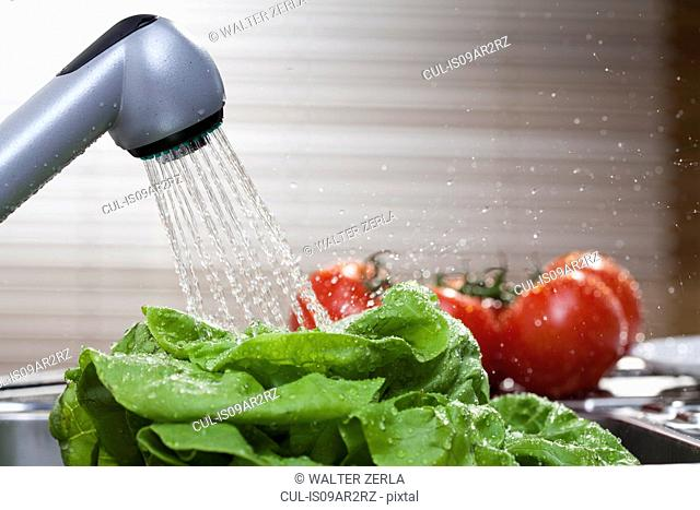 Lettuce and vine tomatoes washing in kitchen sink