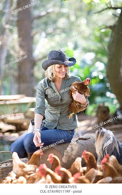 Woman feeding chickens on farm