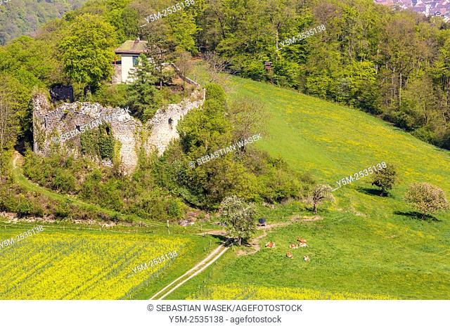 Ruins the Neu-Schauenburg castle, Frenkendorf, Canton Basel-Landschaft, Switzerland