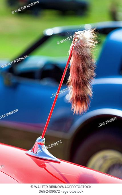 USA, Massachusetts, Cape Ann, Gloucester, Antique Car Show, 1960s-era, tiger tail attached to car antenna