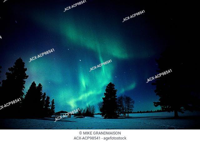Northern lights (Aurora borealis) display Birds Hill Provincial Park Manitoba Canada