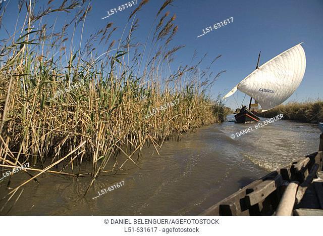 Vela latina boat in a canal. La Albufera. Valencia. Spain