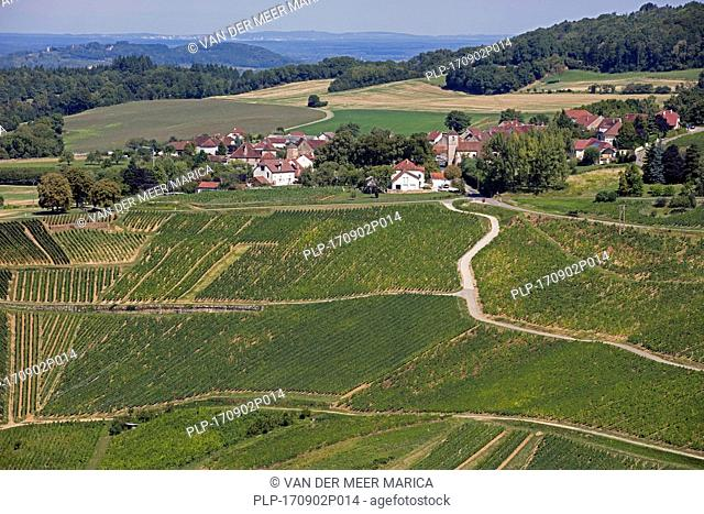Bird's eye view over the village Château-Chalon and vineyards famous for their white wine, Jura department, Franche-Comté, Lons-le-Saunier, France
