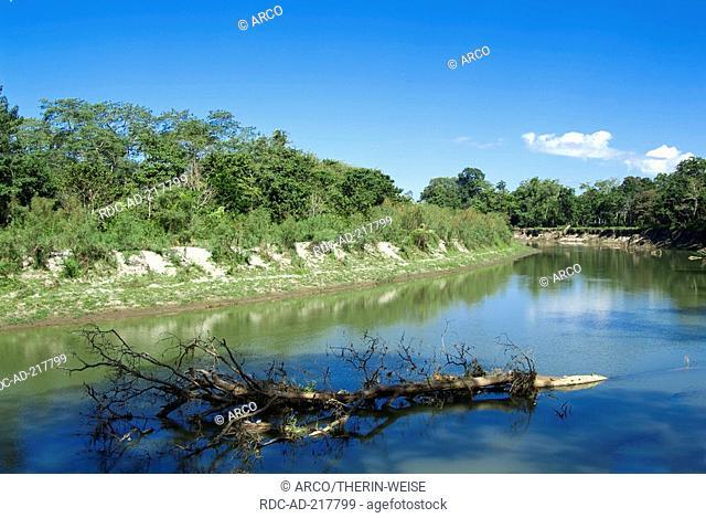 River, Kaziranga national park, Assam, India