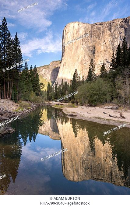 El Capitan reflected in the Merced River in Yosemite Valley, Yosemite National Park, UNESCO World Heritage Site, California, United States of America