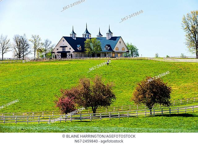Manchester Farm (thoroughbred horse farm), Lexington, Kentucky USA