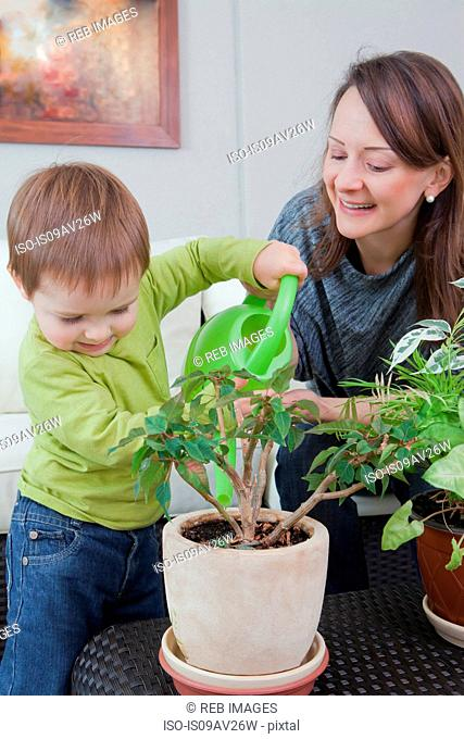 Mother and son watering plant at home