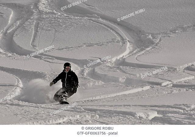 Freeride snowbord on fresh snow