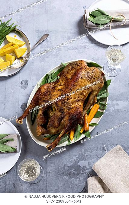 Roast goose with carrots and potatoes