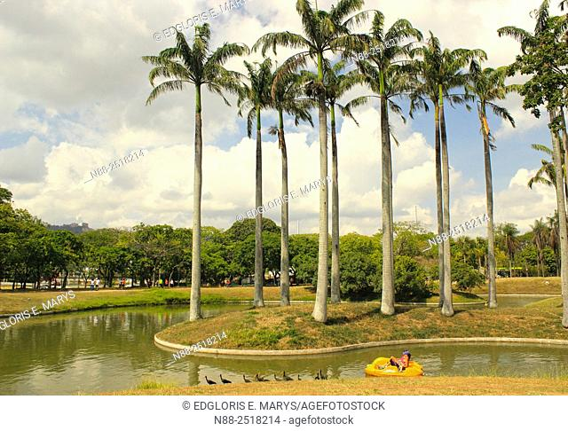 Boat Lake in the West Park, Caracas, Venezuela