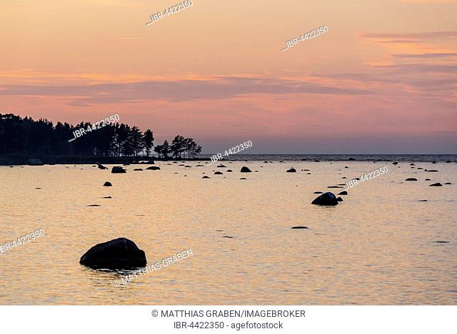 Boulders in water, evening light at Baltic Sea coast, Gulf of Finland, Eisma, Estonia