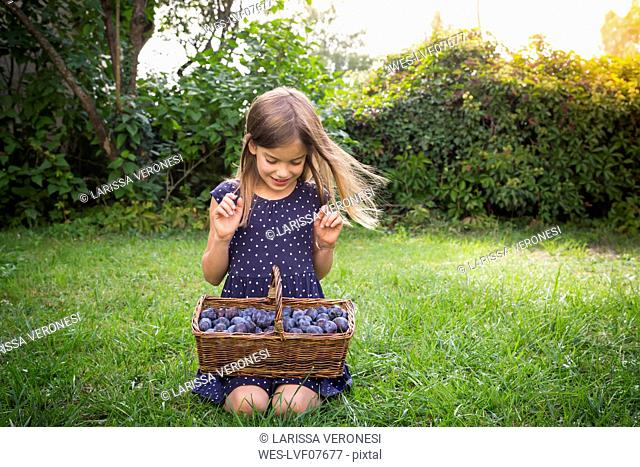 Smiling girl crouching on a meadow with wickerbasket of plums